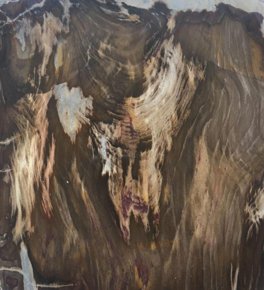 Petrified Wood Spirit Stone