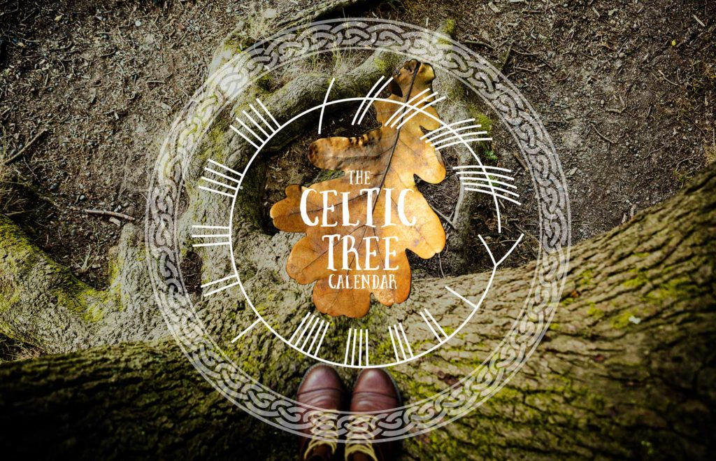 Celtic Tree Calendar Ogham