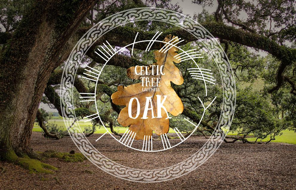 Oak, Tree, Celtic