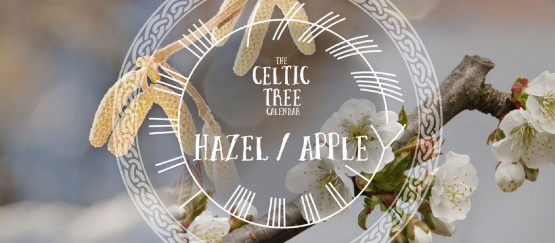 Hazel Apple Celtic Tree Ogham